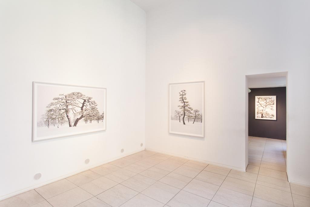 Installation shot of exhibition »SYSTEM« by Jens Liebchen