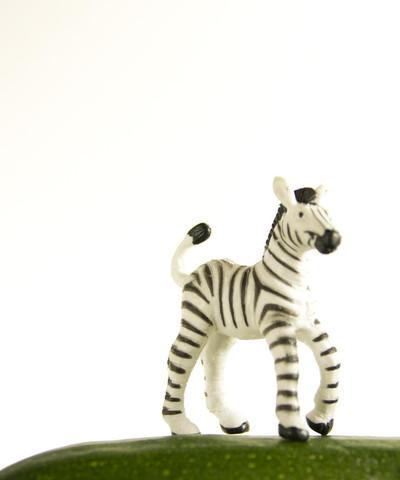 , 'Zucchini the Zebra,' , ArtStar