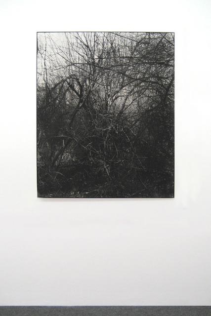 , 'Les Mesnuls,' 2011, Galerie Laurent Godin