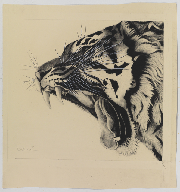 , 'Yawning Tiger,' , Sladmore Contemporary