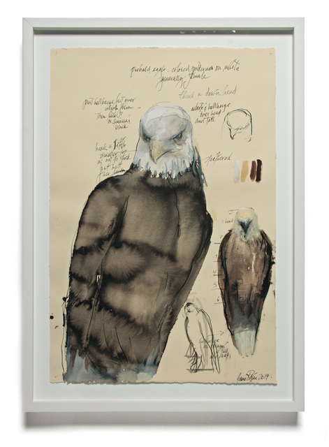 , 'PIEBALD EAGLE,' 2019, Traver Gallery