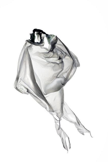 Zelda Zinn, 'Purpetual Plastic #2034', 2018, Walker Fine Art