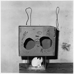 , 'Boxed Rabbit,' 2002, Galleria Massimo Minini