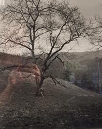 , 'Jose Guetti, Monostor,' 2009, Kahmann Gallery