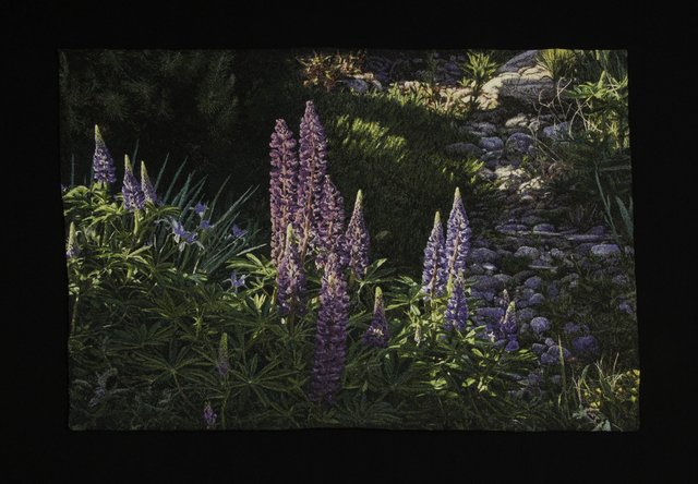 Carol Shinn, 'Lupines', 2020, Textile Arts, Embroidery, Duane Reed Gallery
