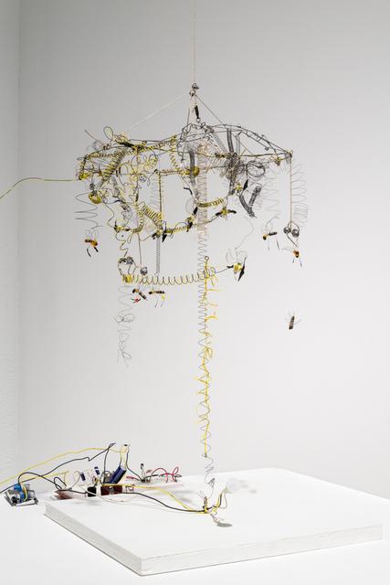 , 'Kinetic Study of Bees No.,' 2013, Ronald Feldman Fine Arts