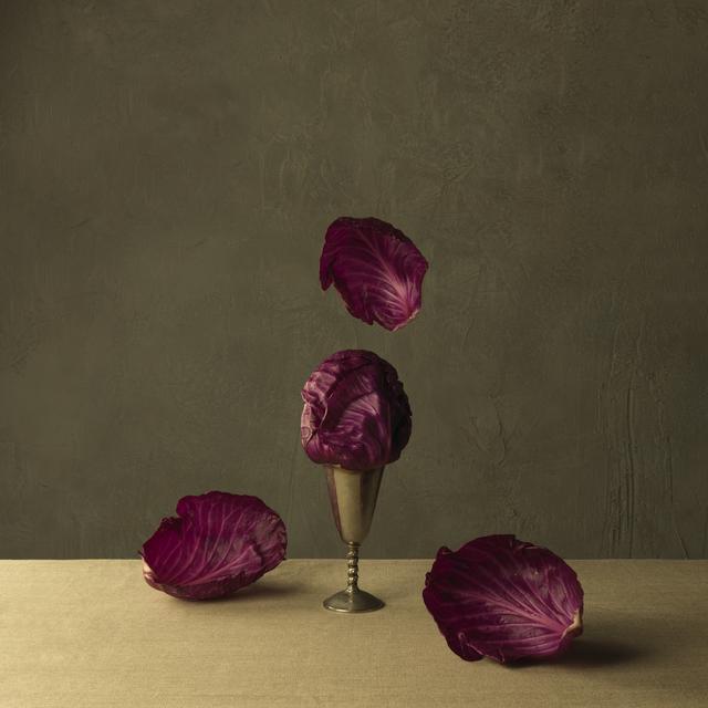 , 'Red Cabbage,' 2013, SmithDavidson Gallery