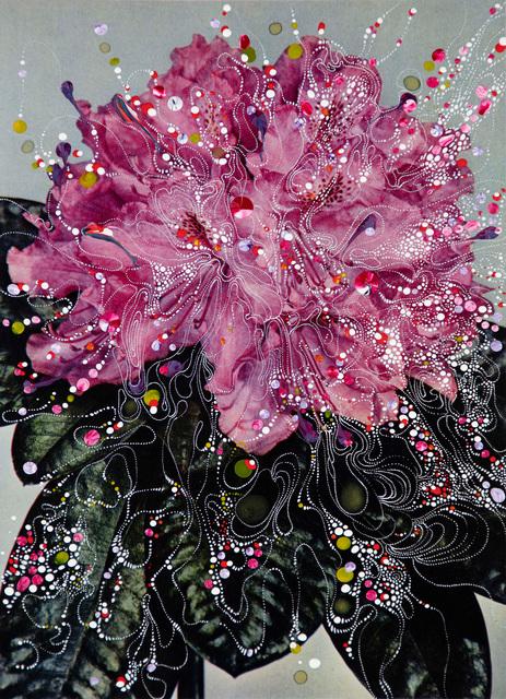 , 'Rhododendron Hybrid Prinses,' 2018, Edwynn Houk Gallery