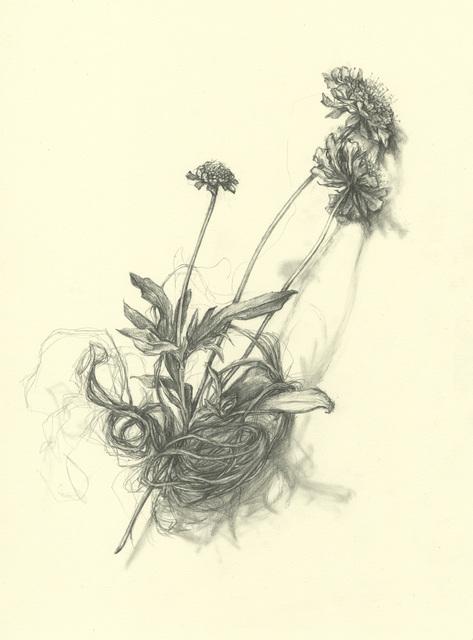 , 'Widow's Weeds,' 2014, Resource Art