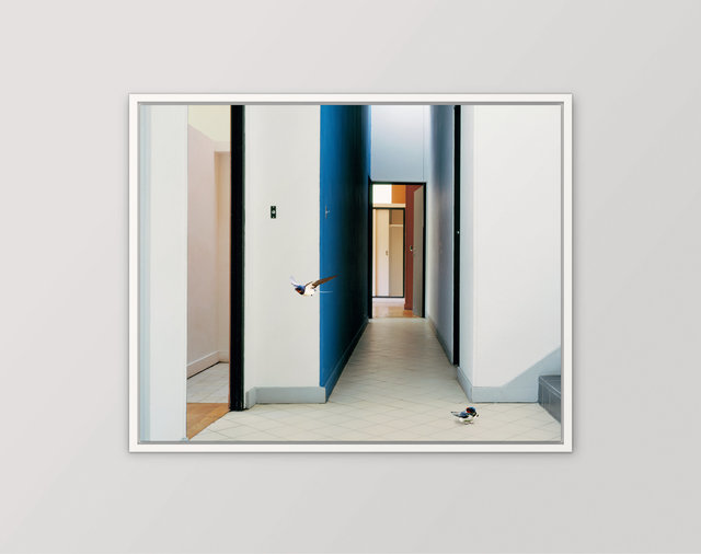 , 'Fables: The Passage, Villa Savoye,' 2006, Hi-Noon