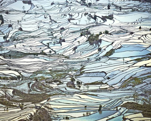 , 'Rice Terraces, (Laohuzui II), Yunnan, China,' 2013, Galerie de Bellefeuille