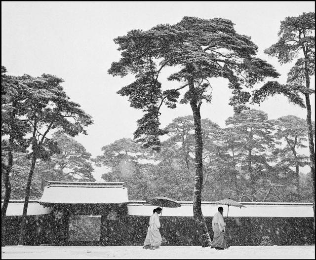, 'Courtyard of the Meiji shrine , Tokyo, Japan,' 1951, Musée de l'Elysée