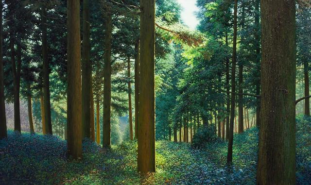 , 'No 68 Silent Woods,' 2010~2012, Galerie Bhak