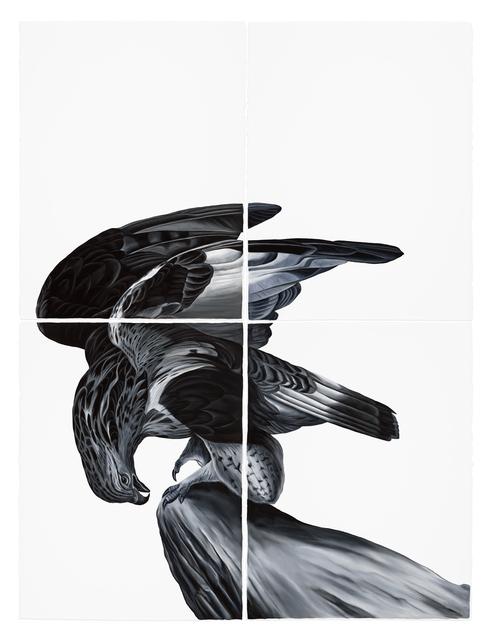 , 'Hawk (after Audubon),' 2017, Visions West Contemporary