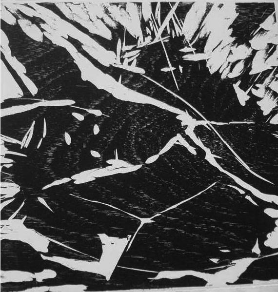 , 'Série Icanhema,' 2012, Mercedes Viegas Arte Contemporânea