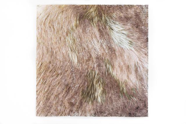 Laura Vandenburgh, 'Matter (hairy)', 2018, Upfor