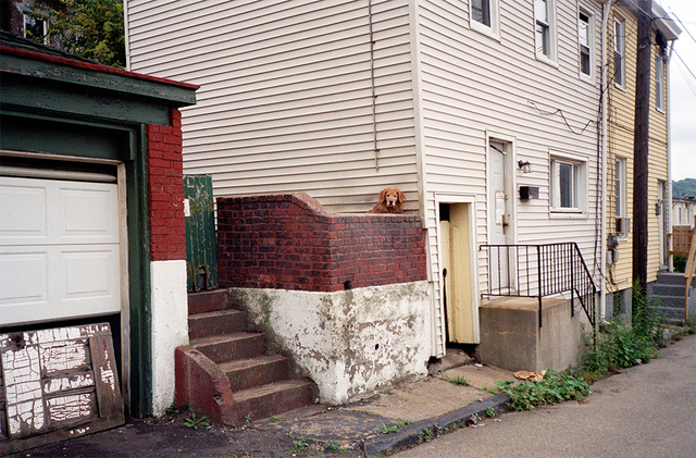 , 'Spring Way,' 2005, Spaces Corners