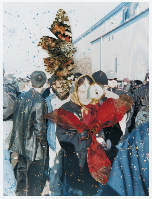 , 'Untitled, from the series 'Hackney Flowers' ,' 2007, The Photographers' Gallery
