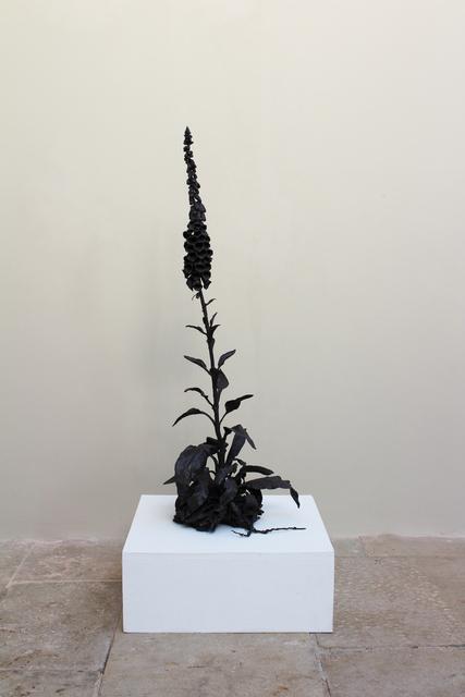 , 'Foxglove,' 2018, New Art Centre