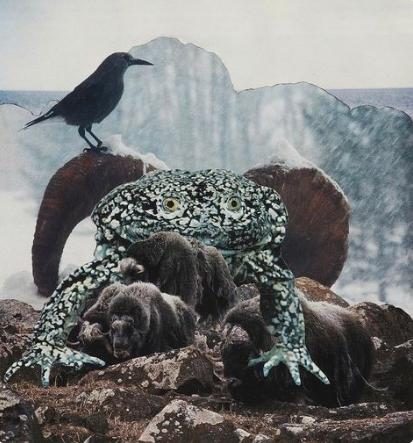 , 'NORTHERN FROG ,' 1981, Anglim Gilbert Gallery
