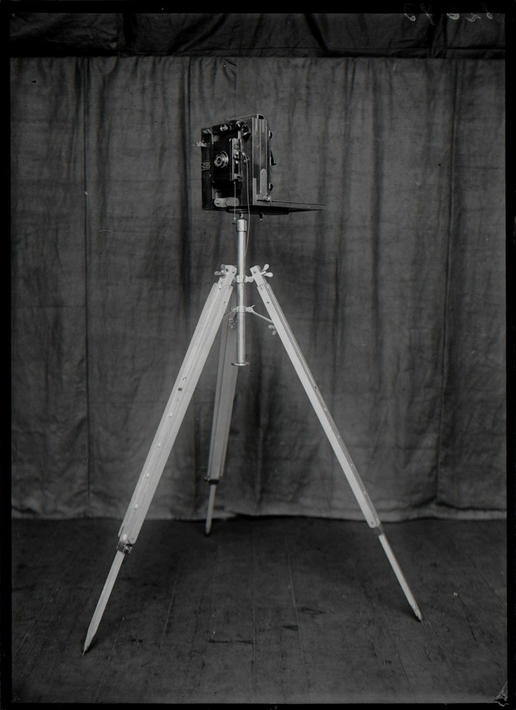 Crime Scenes   A Hundred Years of Photographic Evidence