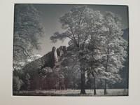Ansel Adams, Half Dome