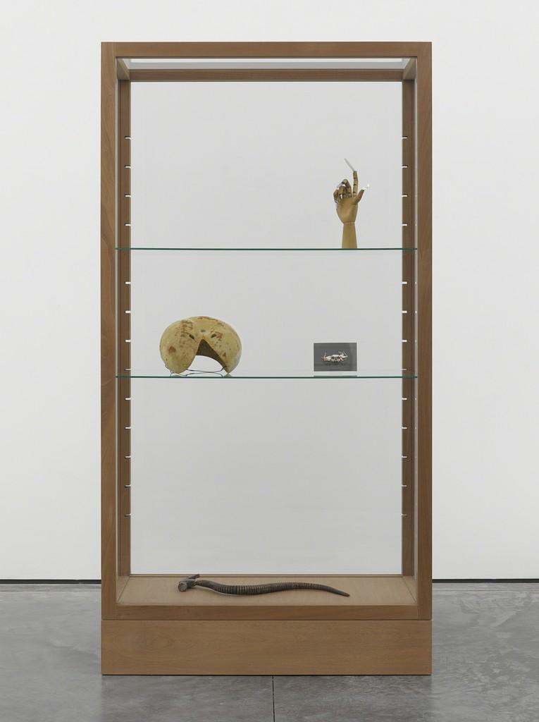 Damián Ortega, 'Short History of Gesture1. Hypothesis: bridge to nature,' 2013, White Cube