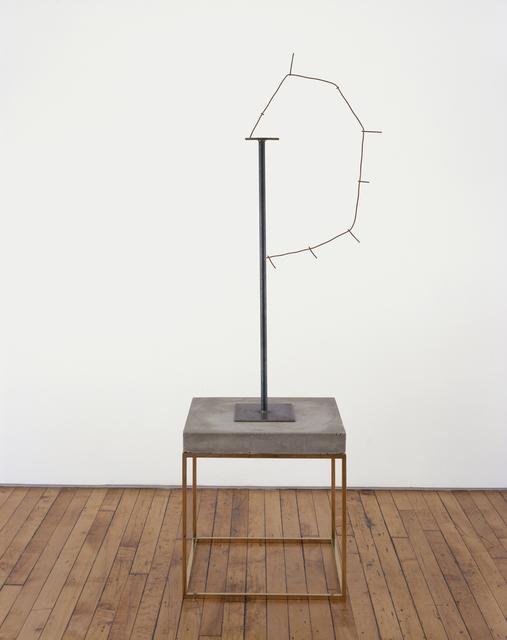 Carol Bove, 'Empathicalism', 2010, Barbara Gross