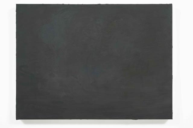 , 'AIC W4,' 2008, Rhona Hoffman Gallery