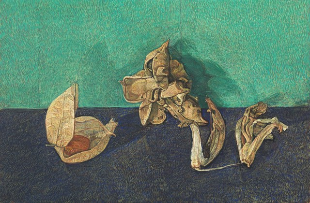 , 'Physalis and Seed Heads,' 2016, Messums