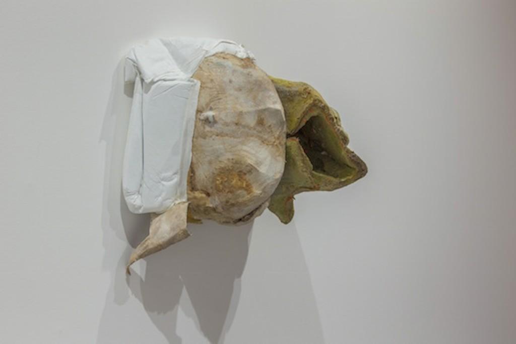 Peter Buggenhout Mont Ventoux #20 2016 Polyurethane, intestine, wax, epoxy