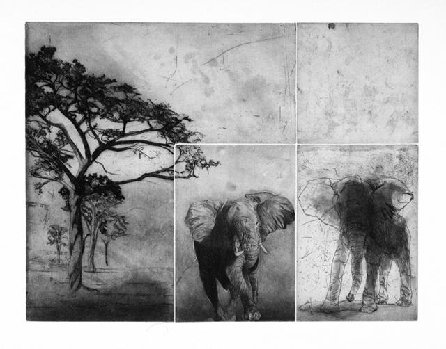 , 'Fenêtre sur l'Afrique,' 2007, Atelier-Galerie A.Piroir