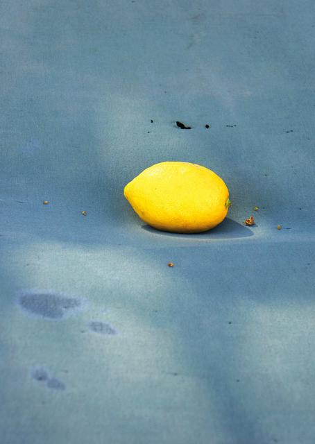, 'A Lemon,' 2018, Carlos Carvalho- Arte Contemporanea