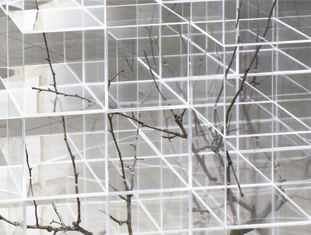 , 'Archived Branch 2,' 2019, Ani Molnár Gallery