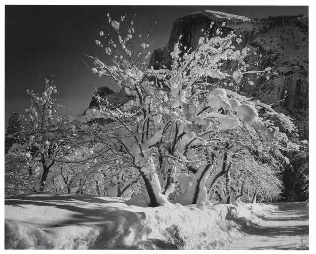 , 'Half Dome, Apple Orchard Winter Yosemite National Park CA ,' 1935, Atlas Gallery