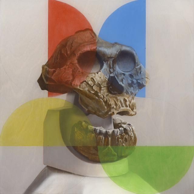 , 'Australopithecus and the early mind,' 2014, Sullivan+Strumpf