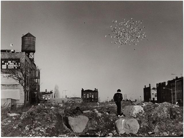 , 'Pigeon Cloud, Bushwick, Brooklyn,' 1987, Arnika Dawkins Gallery