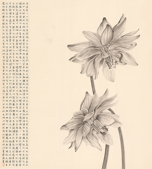 , 'A Duet Lotus,' 2017, Alisan Fine Arts