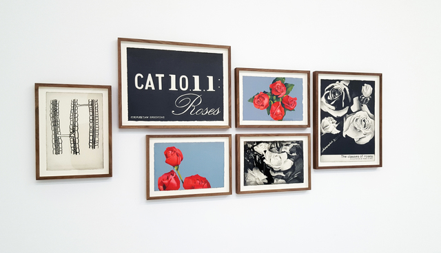 , '(CAT 10.1.1:Roses),' 2014, In Situ - Fabienne Leclerc