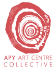 APY Gallery