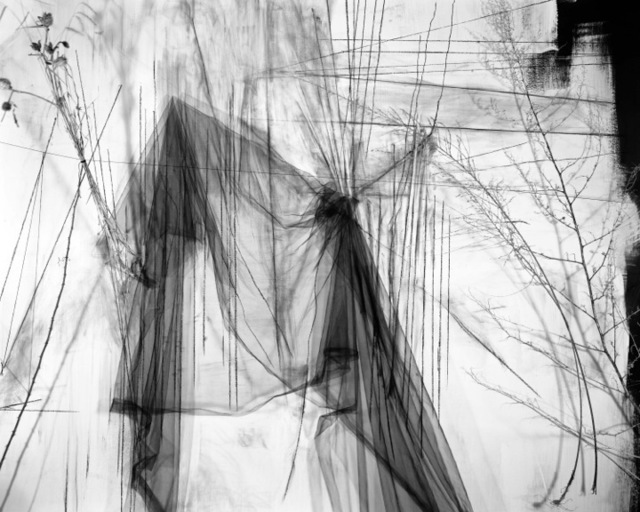 Lauren Semivan, 'May', 2011, Photography, Archival ink print, Benrubi Gallery
