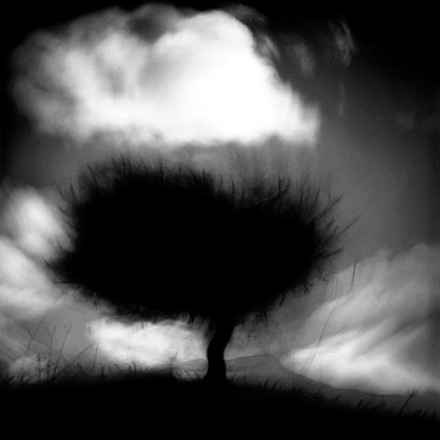 , 'Ulivo  e vento,' , Barbara Frigerio Contemporary