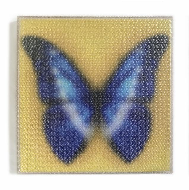 , 'Forgotten - Blue Butterfly ,' 2017, Red Gate Gallery