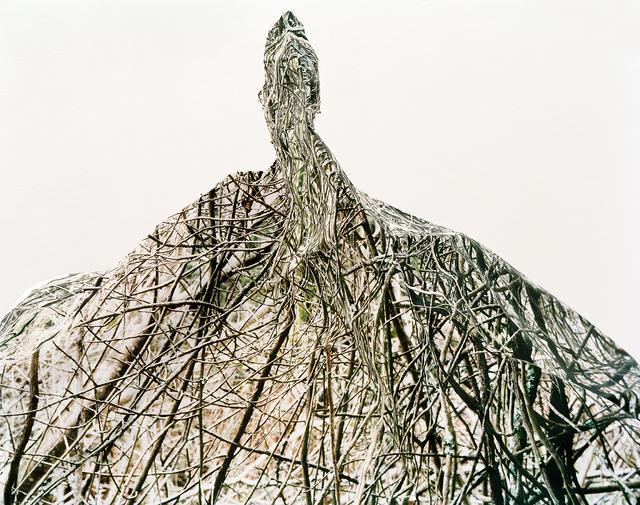 Laura Plageman, 'Thicket 1', 2006, De Soto Gallery