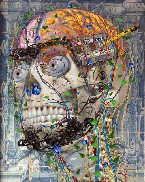 , 'Transdifferentiation,' 2016, Koplin Del Rio