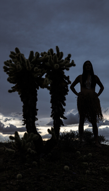 , 'Nuwuv Woman (Silhouette with Cholla),' 2017, David Richard Gallery