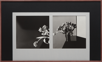 Robert Mapplethorpe, 'Tulips,' 1977, Phillips: Photographs (April 2017)
