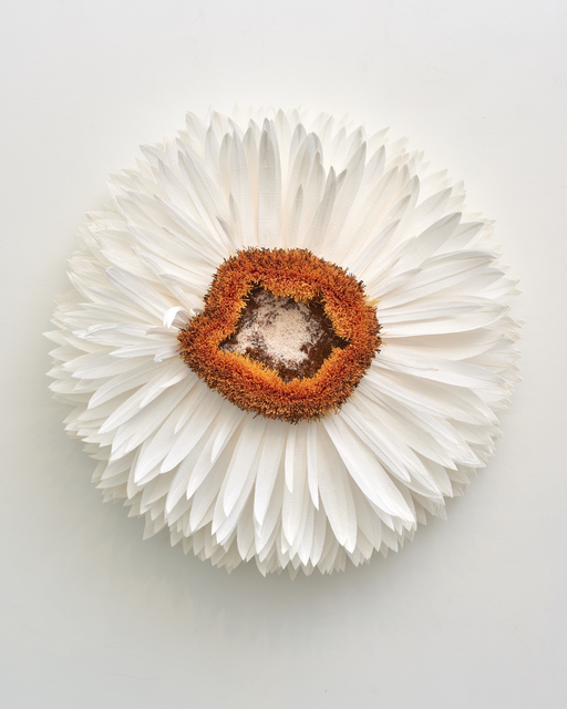 , 'Specimen A (Strawflower),' 2019, Eleanor Harwood Gallery