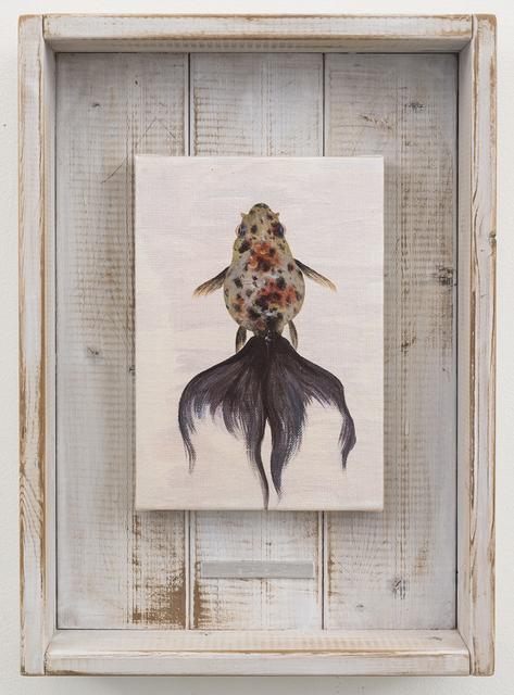, 'Goma,' 2015, Joshua Liner Gallery