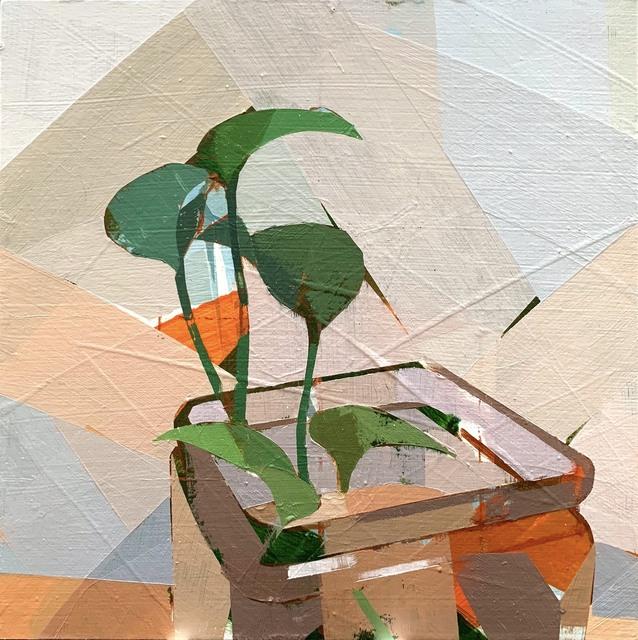 , 'Still life with Ivy no.3.,' 2019, Hall Spassov Gallery